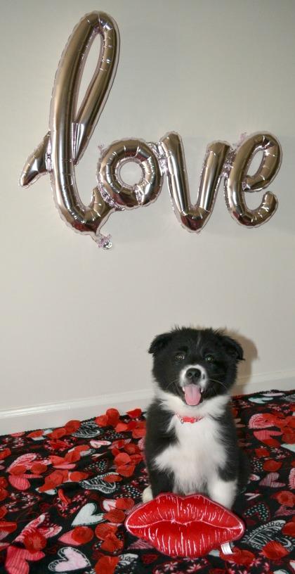 love-balloon
